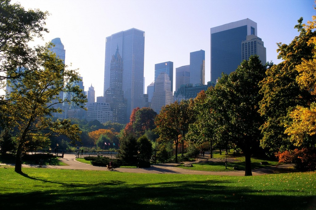central-park-new-york-other